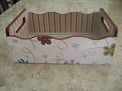 Cestinha organizadora (Criativa Cor/ Daniela) Tags: craft decorao organizador cestinha