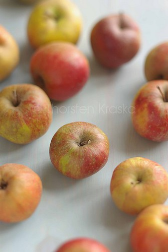 Boskoop Apples