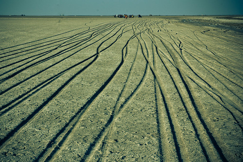 Our tracks in the Rann