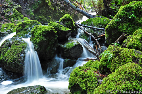 Small cascade, Cataract Falls (1of2)