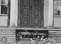 Lade gård (1962) (Trondheim byarkiv) Tags: norway norge 60s archive norwegen archives noruega trondheim sørtrøndelag 1962 noorwegen lade gård trøndelag arkiv trondhjem byarkiv ladegård trondheimkommune trondheimbyarkiv fotopositiv torh41b31 f2332