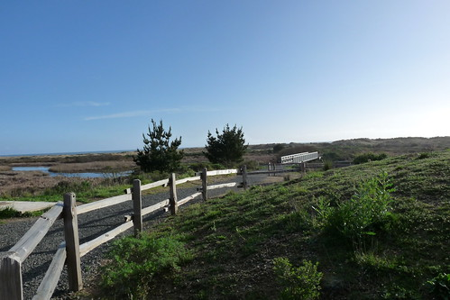 trail to limantour beach