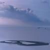 Secrets of the Ice Ages (B℮n) Tags: winter sunset snow cold ice iceage evening frozen geese topf50 bevroren nederland goose greenhouse sphere glaciers dijk topf100 dike topf200 flevoland ijsselmeer frozenlake almere kou ijs icefield northpole icecold sfeer blueocean icecap ijmeer vformation winterinholland markermeer hummocks 100faves 50faves roaldamundsen koude vriezen 200faves icesheet icedrift driftice kruien specialpicture worldbest winter2010 ijsschotsen kruiendijs oostvaardersdijk klimaatveranderingen winterinthenetherlands ijsvlakte saariysqualitypictures glacialage skylineofamsterdam zoetwatermeer littleiceageruns eilandpampus islandpampus ijskappen spectaculairbevroren meltinghummocks ijmeerbevroren frozenlakeijmeer icedrifting hollandwinter2010 polartreks thesecretsoficeages