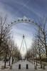 Eye (almonkey) Tags: trees london eye wheel nikon londoneye bluesky symmetry handheld ferriswheel hdr touristattraction lunchtimewandering 5xp d700 itsthatshotagain
