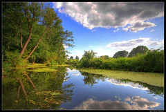 freshness (Qba from Poland) Tags: park blue trees cloud reflection tree green nature water clouds poland hdr qba arkadia 5xp theunforgettablepictures unforgettablepicture platinumheartaward tripleniceshot qbafrompoland