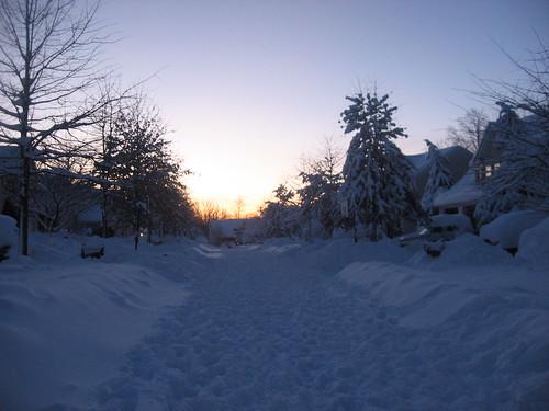 Snowpocalypse2 DC Feb 2010 Loudoun County 1