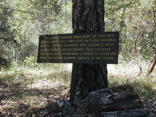Petrified Sign