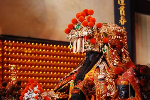 台南黑面琵鷺GO-201002032-2