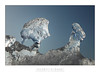 Ice drift at Gaast / Kruiend ijs bij Gaast (Jeroen Bosman) Tags: winter white ice netherlands frozen bevroren hiver eis wit glas friesland glace drift ijs gaast schittering kruien kruiend kistwerk