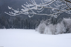 Winter (Pavel Vanik) Tags: winter canon eos czechrepublic bohemia 30d 1755 umava bohemianforest modrava