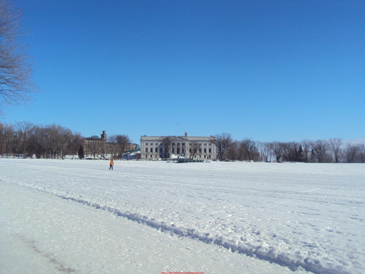 2010-02-13_004