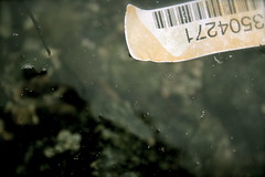 Barcode ([ blair stretch ]) Tags: summer green water found garbage bubbles pacificocean 2008 westcoast thearchives canonxsi evenoceansneedabarcode
