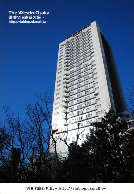 【via關西冬遊記】大阪住宿推薦~The Westin Osake大阪威斯汀飯店4
