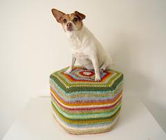 pouf (Camilla Engman) Tags: dog crochet puff pouf morran