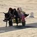 チュニジア 画像100