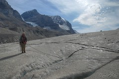 Climbing @ Athabasca Icefield (GlobeTrotter 2000) Tags: world trip travel vacation holiday canada tourism rockies jasper tour place sightseeing visit location tourist canadian glacier journey alberta parkway dome planet destination banff lonely sight traveling climber visiting exploration touring illuminate athabasca icefield gettyvacation2010