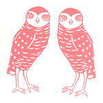 "Burrowing Owl Couple by Sarah Landwehr <a style=""margin-left:10px; font-size:0.8em;"" href=""http://www.flickr.com/photos/7331163@N05/4435875856/"" target=""_blank"">@flickr</a>"