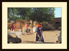 A village of rohi desert (TARIQ HAMEED SULEMANI) Tags: pakistan desert fort tariq cholistan bahawalpur rohi derawar concordians sulemani jeeprally2010