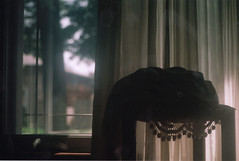 (film festival) Tags: morning film window loneliness lace lovely