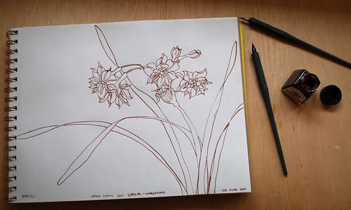 20100328 ink dwg 2