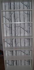 Naked Bookcase