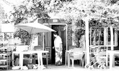 junio 008 (enazul) Tags: naturaleza blanco y negro fotografia cuidad aficionado artstica