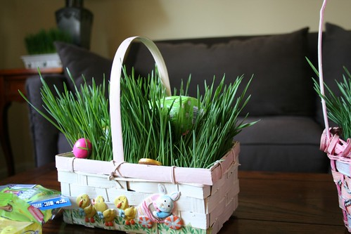 Wheatgrass-filled Easter basket