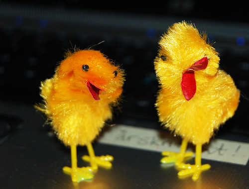 Wiggly Chicks (Photo by iHanna - Hanna Andersson)