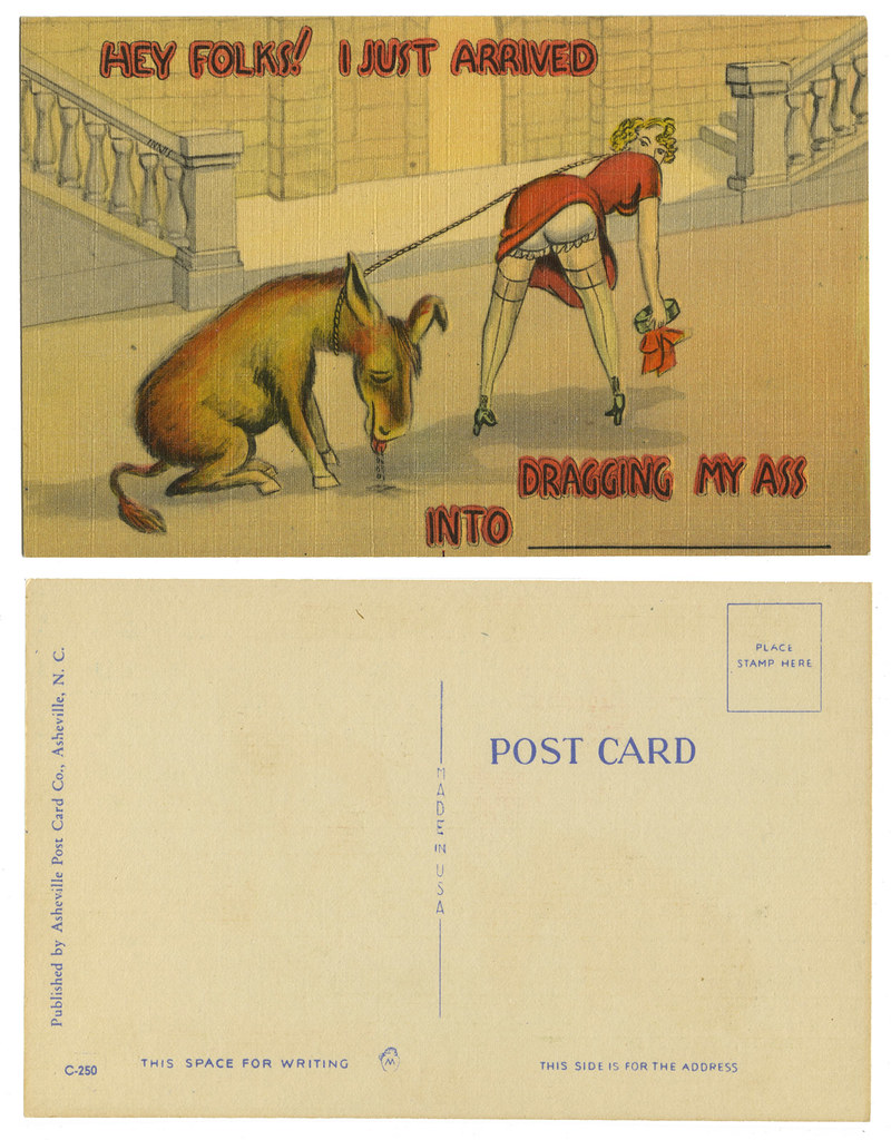 Asheville Post Card_donkey_tatteredandlost