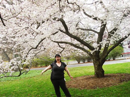 365-282: Spring!