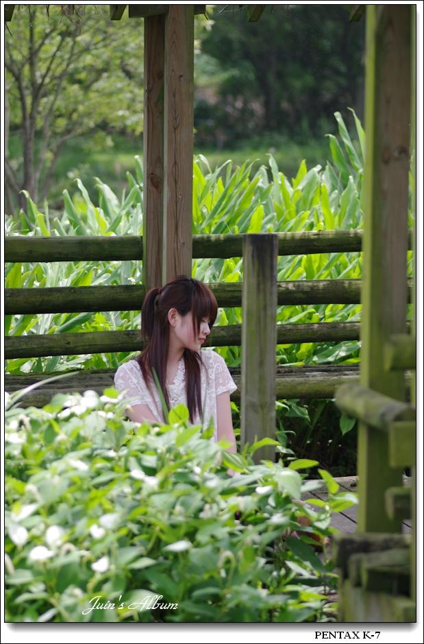 2010 juin生態 02 農改場