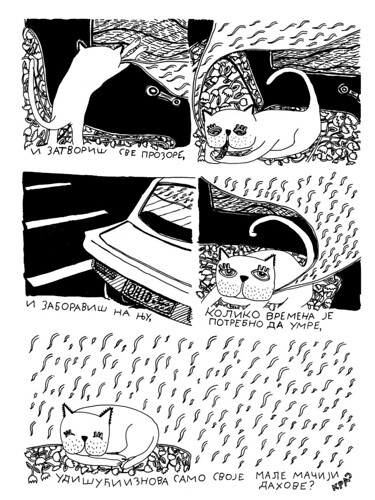 Maciji Kasalj - page 2