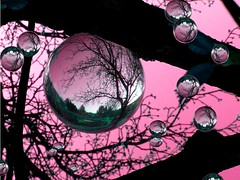 the tree with the pink balls (april-mo) Tags: reflection nature glass ball garden spring sphere refraction contrejour glasswork crystalball spheric pinkballs romanticpicture treewithballs