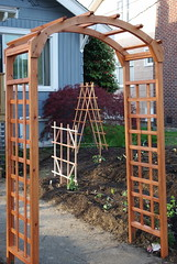 cedar trellis for passion flowers and jasmine