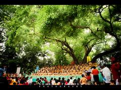 Ramna Batamul (Shabbir Ferdous) Tags: light woman color colour women colorful photographer shot bangladesh bengali bangladeshi pohelaboishakh april14 1417 ramna nababarsho noboborsho shuvonoboborsho poilaboishakh shubhonoboborsho canoneos5dmarkii shabbirferdous banglacalendar ef2470mm28lusm boishakhiparade banglagirls bdgirls celebrationinbangladesh batamul botmul wwwshabbirferdouscom shabbirferdouscom