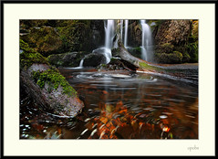Golden stones! (opobs) Tags: sun wet water southwales wales river waterfall moss spring rocks afternoon wideangle april canon5d pontsticill 2010 circularpolariser talybont 1740mml wetknees opobs michaeljstokesawpf minigitzo