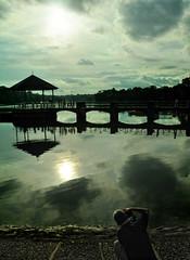 When I'm alone - Singapore Lower Peirce Reservoir (i359702) Tags: i359702 singaporelowerpiercereservoir