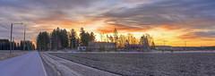 Arola elementary school panorama