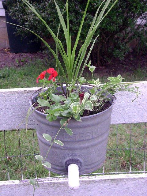 Calf-Teria planter