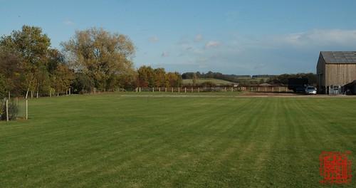 Wide green field