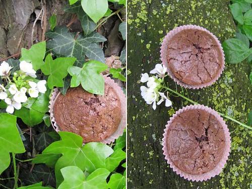 Muffins al cioccolato e lavanda
