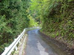 20100430_入山峠サイクリング_11