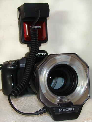 DSC00923-2