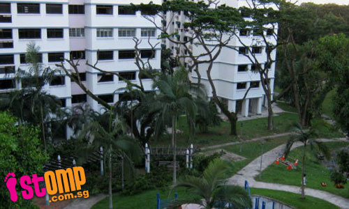 Trees that provided us with shade were cut 'botak'