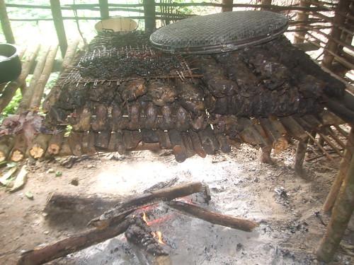 pigeons on drying rack