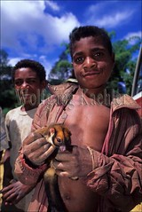 50020668 (wolfgangkaehler) Tags: boy people pet smile smiling children highlands opossum native southpacific papuanewguinea tari newguinea oceania melanesia nativepeople localboy petanimal nativeboy peopleworldwide newguineahighlands childrenworldwide tarinewguinea