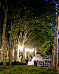 Cadman Plaza Raw - Post Processing Done (Diacritical) Tags: park trees grass night bench lights post path handheld cadmanplaza 2470mmf28 d700