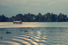 Beauty Of Kerala (VinothChandar) Tags: cruise sea india lake tree water birds landscape coast boat turtle kerala palm canals coastal rivers kingfisher otter boating arabian backwaters cruises darter westernghats freshwater alleppey waterscape malabar alappuzha