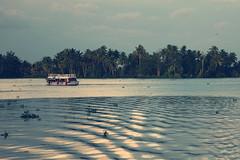 Beauty Of Kerala (VinothChandar) Tags: cruise sea india lake tree water birds landscape coast boat turtle kerala palm canals coastal rivers kingfisher otter boating arabian backwaters cruises darter westernghats freshwater alleppey waterscape malabar alappuzha
