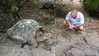 Steve Confers With a Male Tortoise